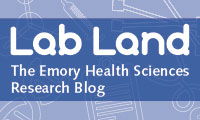 Elory Lab Land Blog