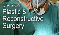 Division of Plastic and Reconstructive Surgery, Department of Surgery, Emory University School of Medicine